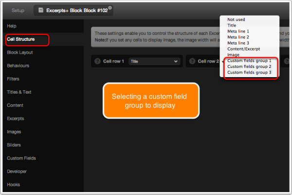 eplus-selecting-custom-field-group