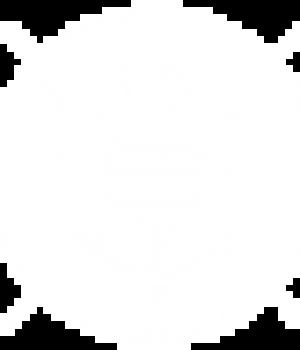pizazz-white-sparkle-logo-lined-48x48